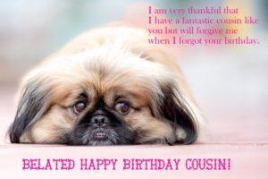 happy belated birthday cousin