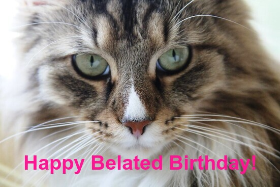 Happy Belated Birthday Meme